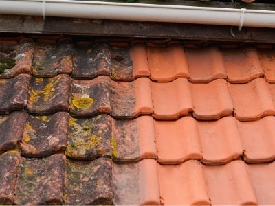 Roof Tiles Cleaning