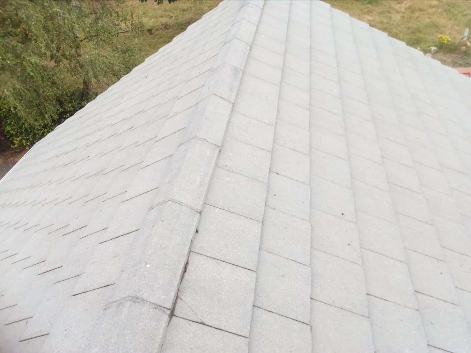 Roof Cleaning Laois